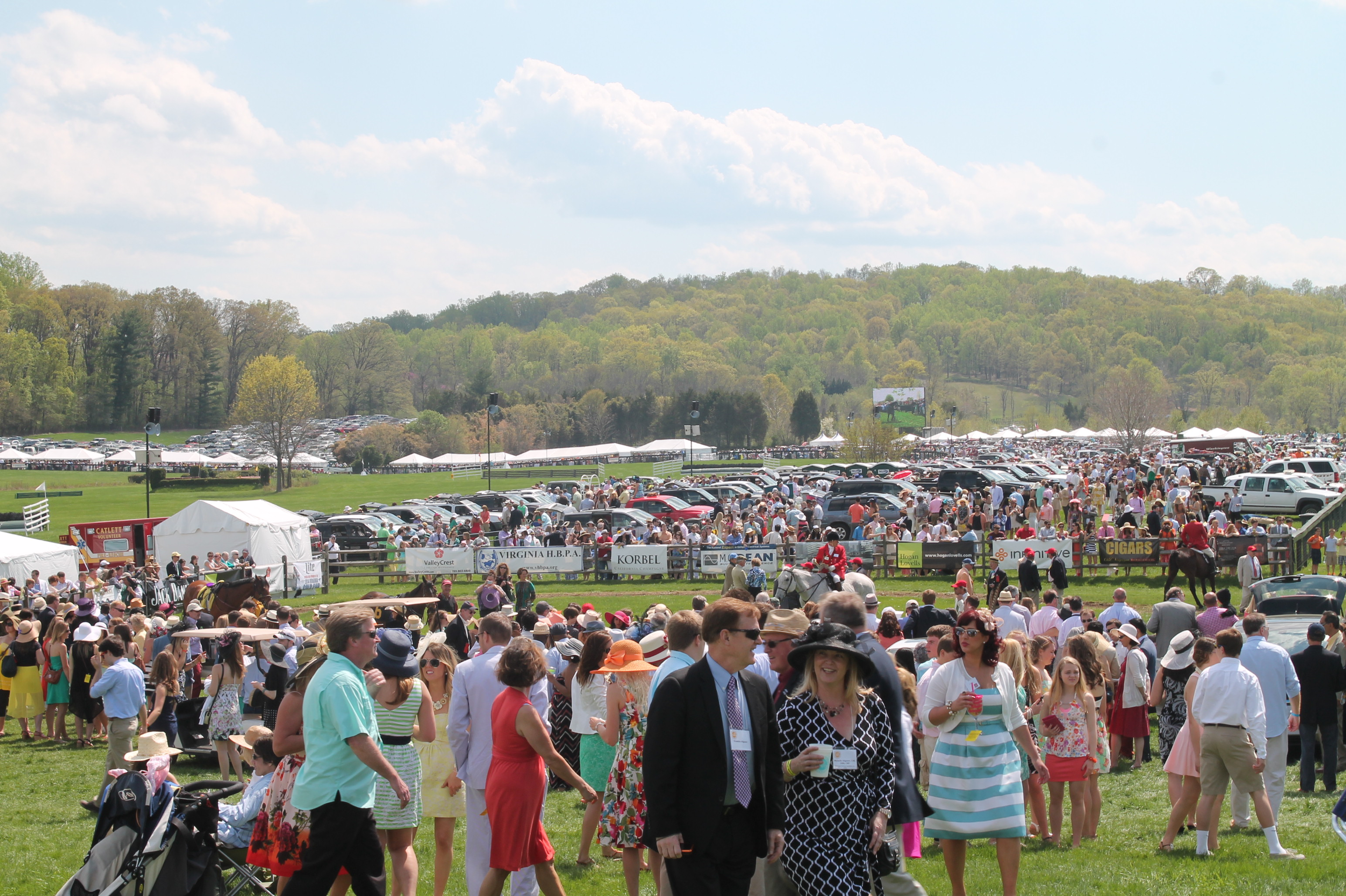 Virginia_Gold_Cup_Plains_2014_5
