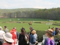 Virginia_Gold_Cup_2014_Meadow_2