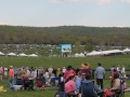 Virginia_Gold_Cup_Plains_2014