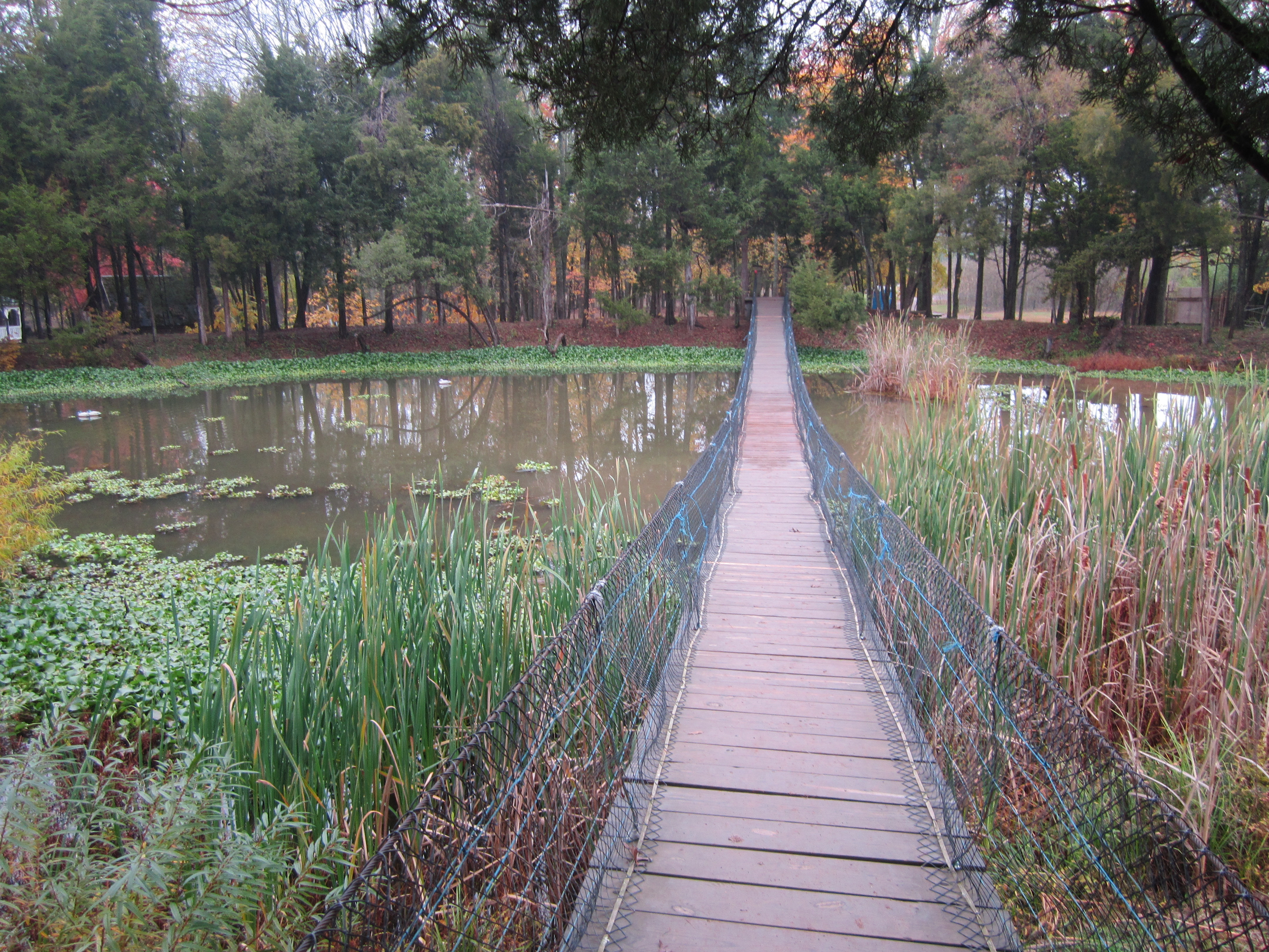 Ticonderoga_Wooden_Bridge_2