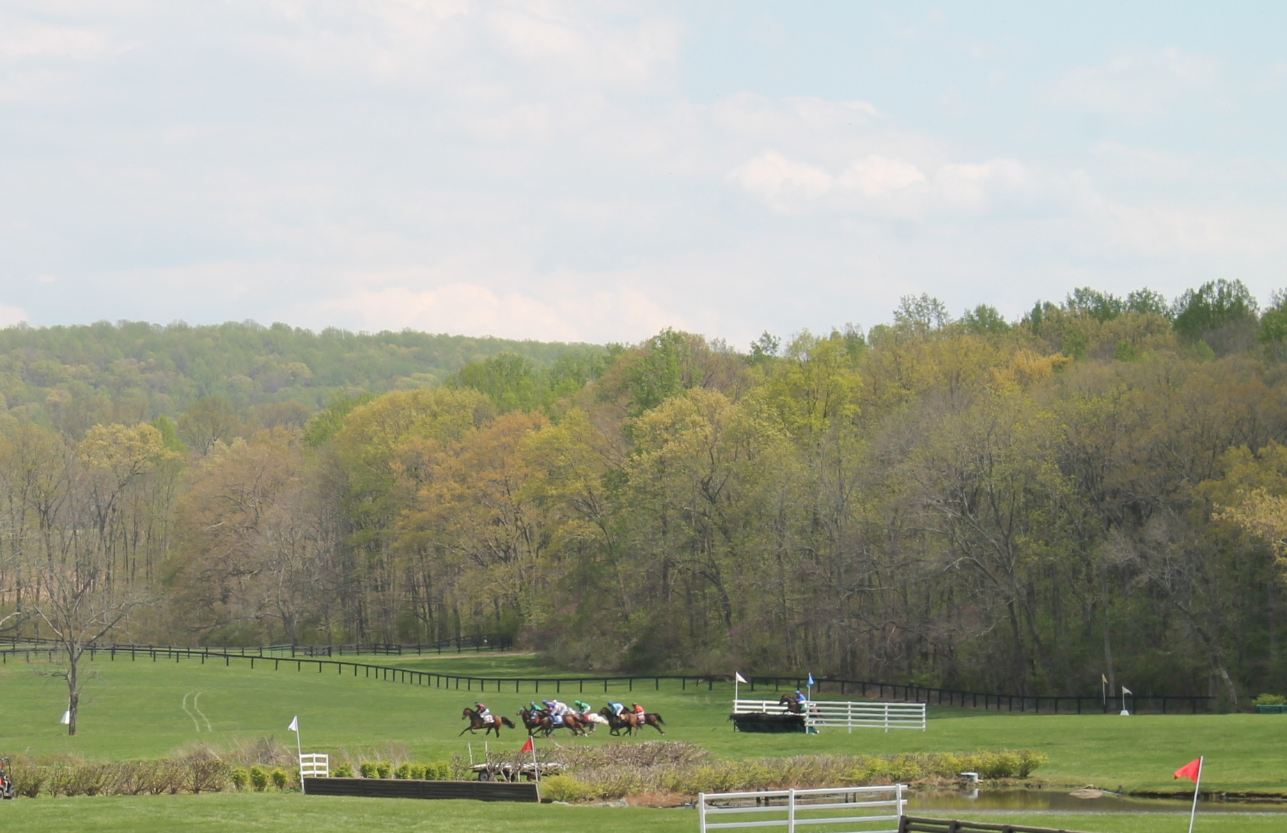 Virginia_Gold_Cup_2014_Meadow