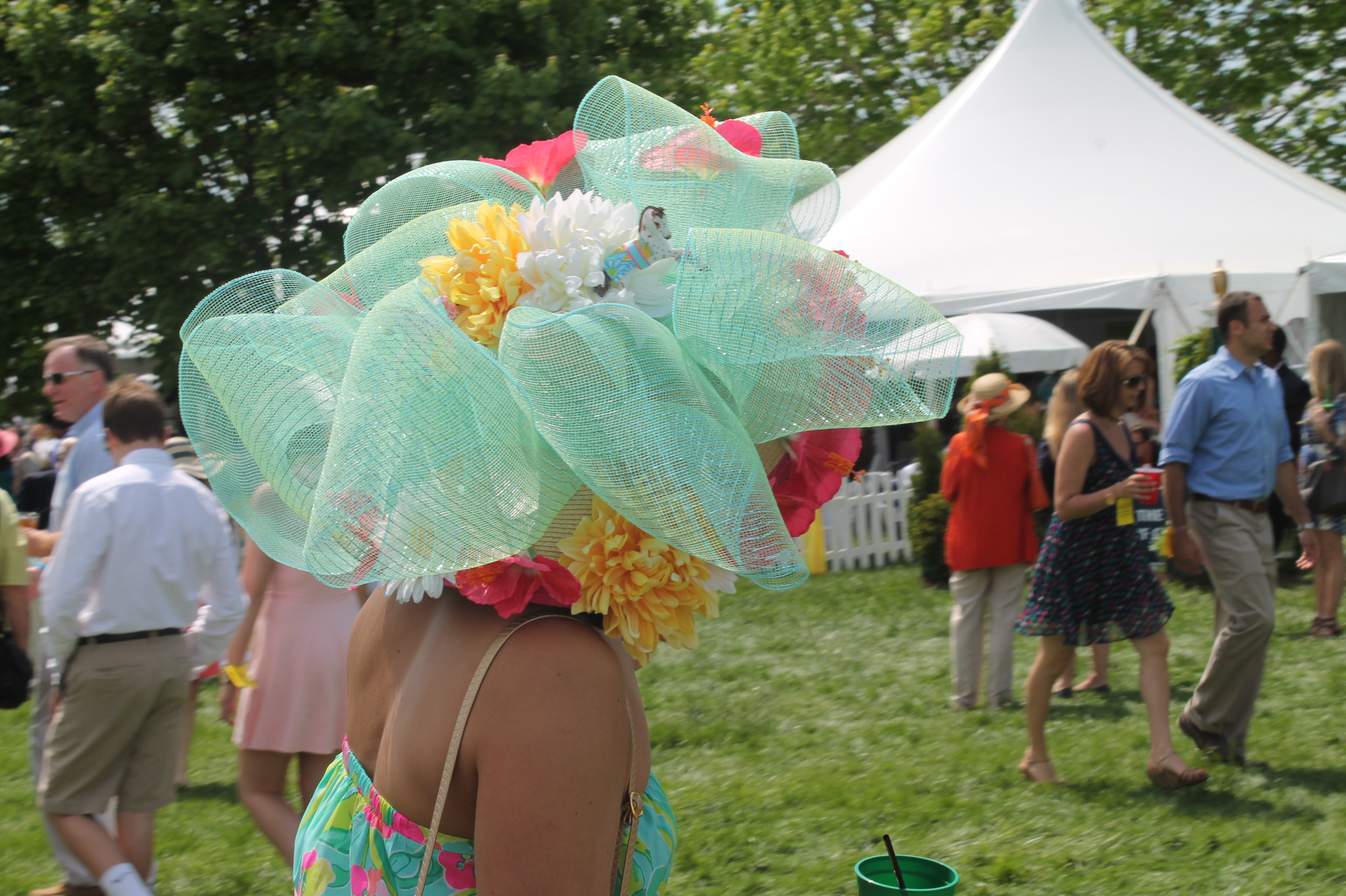 Virginia_Gold_Cup_Hat_2014
