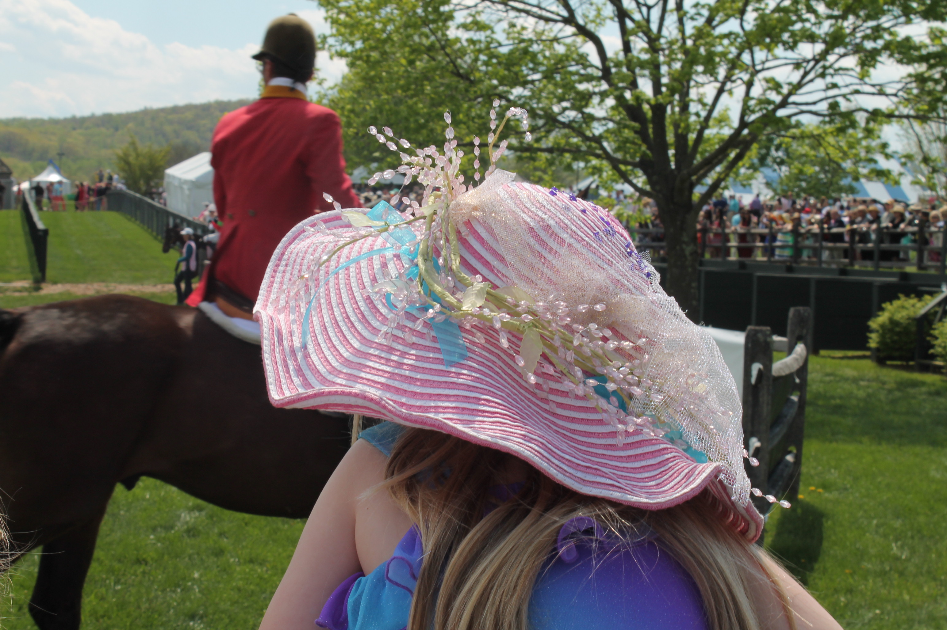 Virginia_Gold_Cup_Hat_Plains_2014