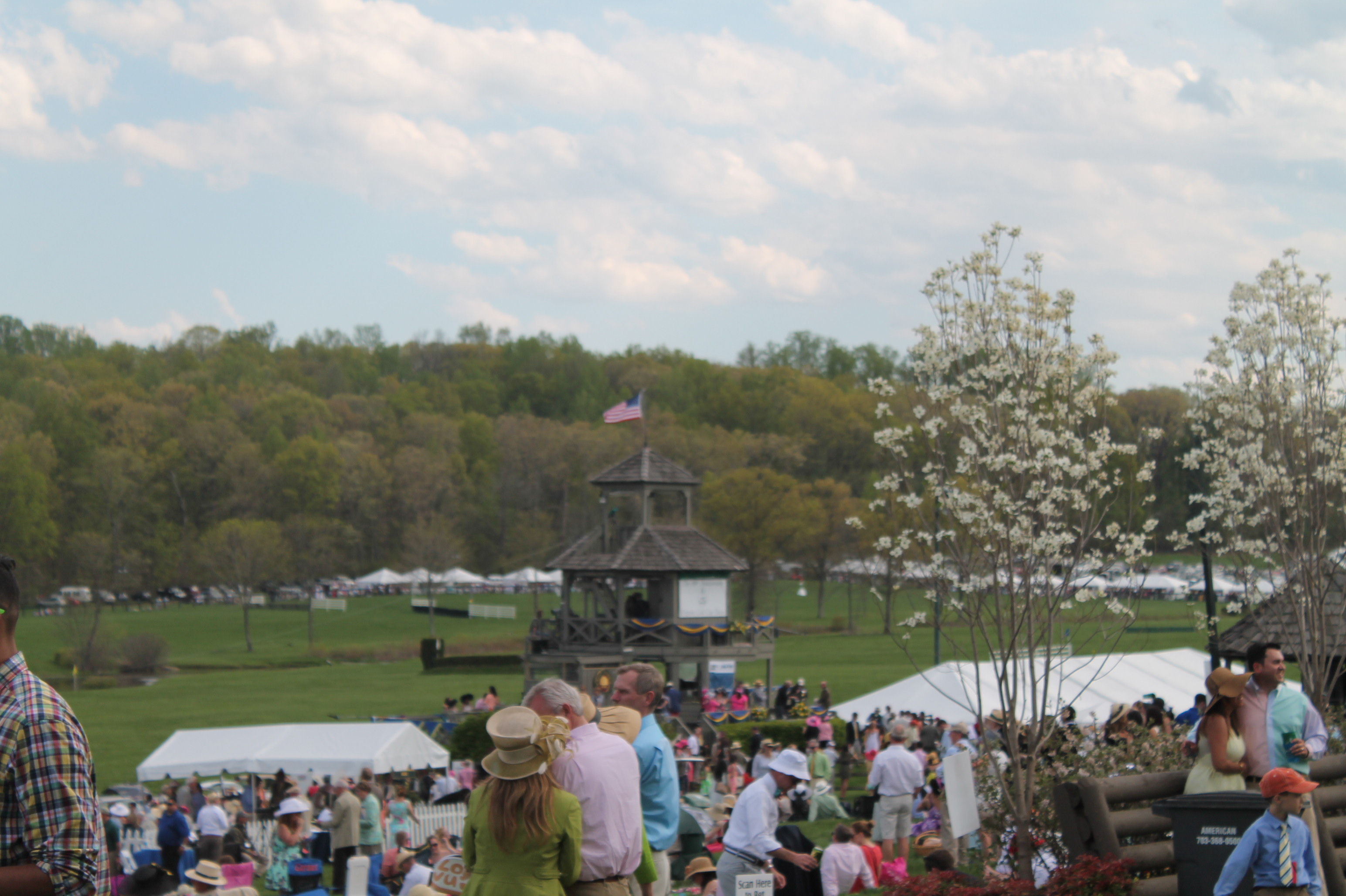 Virginia_Gold_Cup_Plains_Spring_2014