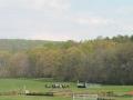 Virginia_Gold_Cup_2014_Meadow