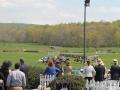 Virginia_Gold_Cup_2014_Race_3