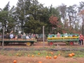 Ticonderoga_Pumpkin_Hayride